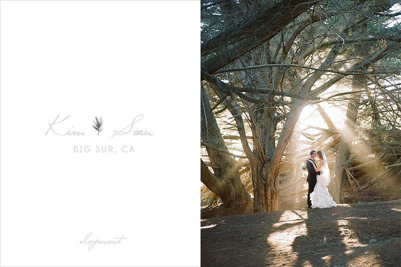 TWWL_BIG_SUR_ELOPEMENT_KS1