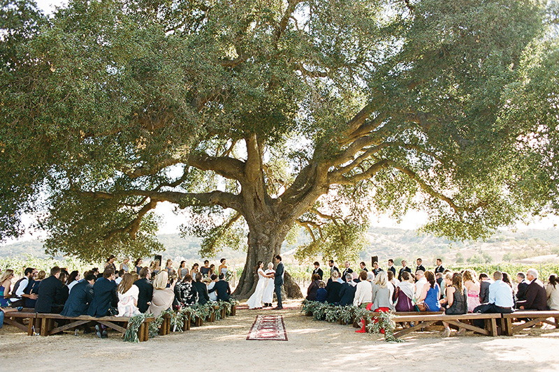 TWWL_VINEYARD_WEDDINGS_AP7